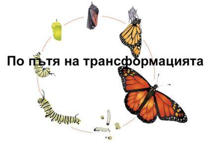 По пътя на трансформацията (ОНЛАЙН КУРС)